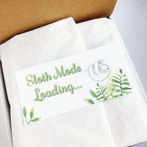 sloth lovers gift bundle